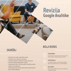 revizija google analitike