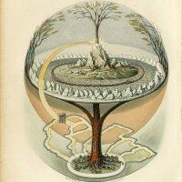 Eschentriebsterben und der Weltenbaum