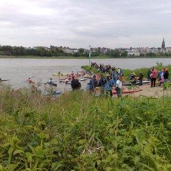 Köln-Rodenkirchen: Wassersport am Rhein (Fotos)