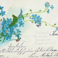 20 Grußkarten um 1900