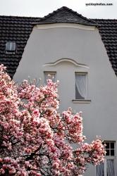 Rheinufer Köln-Rodenkirchen