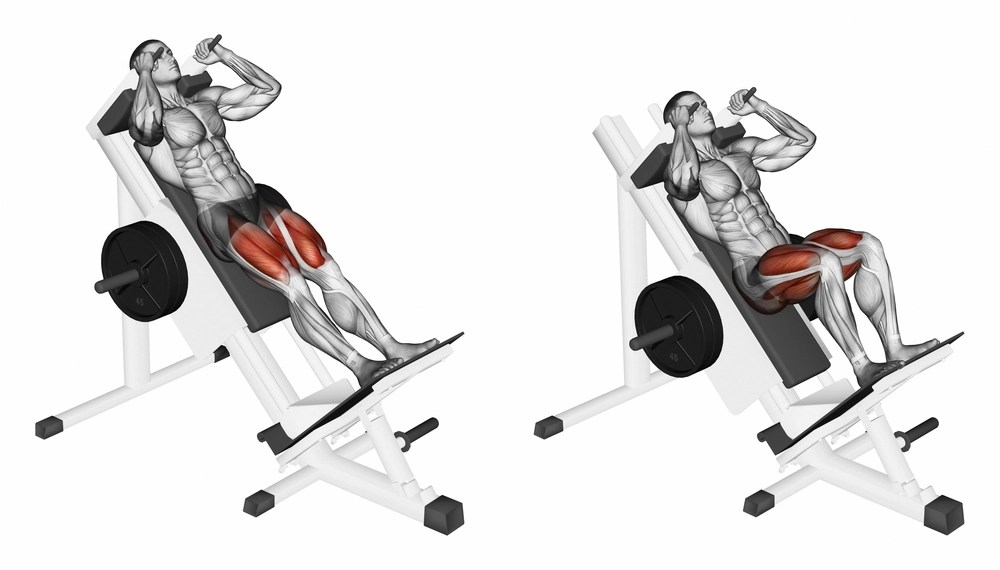 how to get massive legs