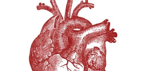 Día Internacional del Corazón, Ilustraciones con mucho  #HoyEsDíaDe