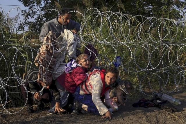 Migrantes sirios cruzan bajo una alambrada mientras entran a Hungría a través de su frontera con Serbia, cerca de Roske (Bernadett Szabo, Thomson Reuters – 27 de agosto de 2015).