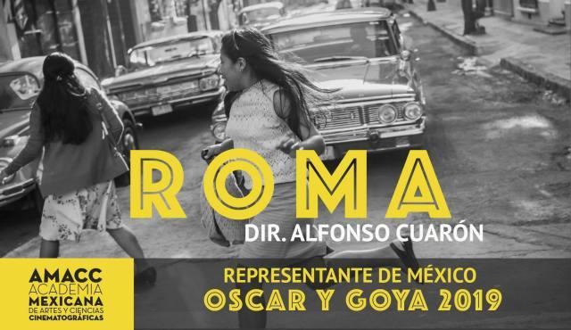 """""""Roma"""" representará a México en los premios Goya y Oscar 2019"""