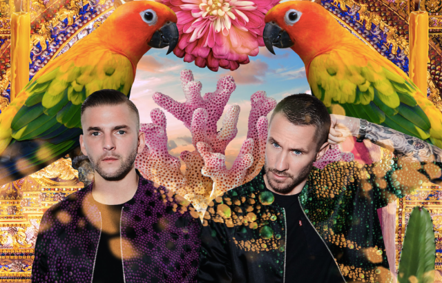 Ponle play: discos nuevos de Bombay Bicycle Club, Grimes y Galantis