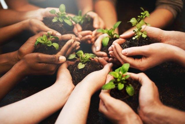 Educación ambiental desde la infancia ayudará a mitigar cambio climático