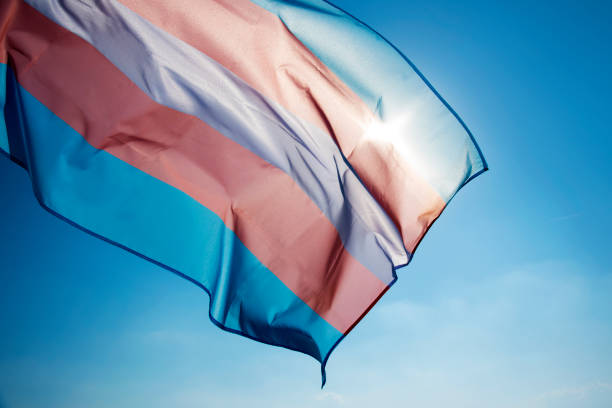 Reconocimiento y afirmación de género de personas trans mejora su salud mental