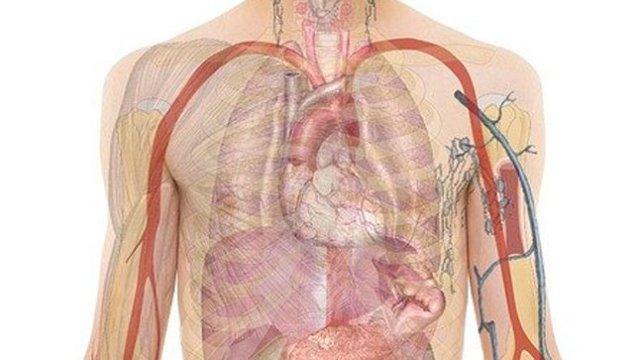 Algunos de los tipos de linfomas son altamente curables, según expertos