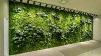 Green wall systems | living indoor art planter designs ...