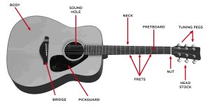 The Acoustic Guitar Step By Step Buying Guide  GAK BLOG