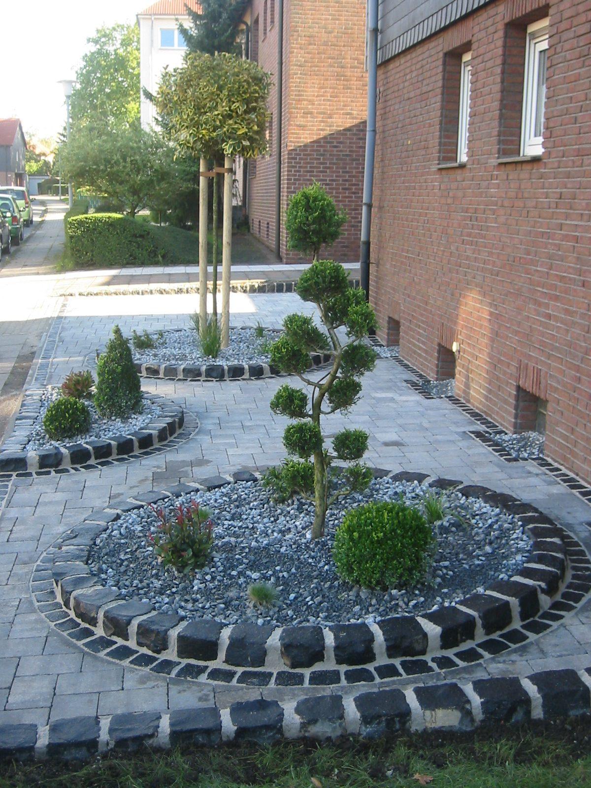 Neupflanzungen  Gehlzpflege  Garten und Landschaftsbau Patrick Fink  Meisterbetrieb Gladbeck