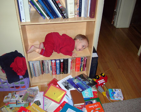 Lego laying down on the bookshelf