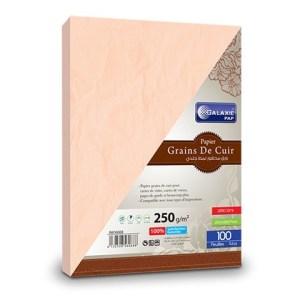 grains de cuir A4-100-rose