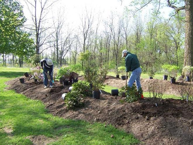 DIY Landscaping Service