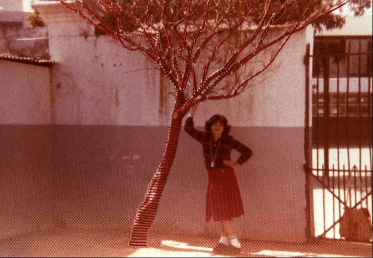 """""""L'arbre brodé - L'adolescence"""""""
