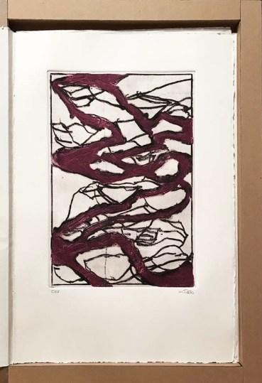Monique Tello, Livre d'artiste