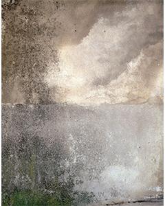 n°19 Cote d'or, 1992. Prise de vue argentique, 66,5 cm x 54 cm.