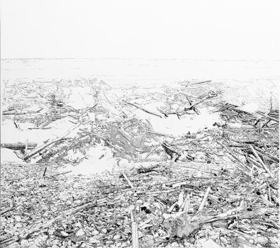 """Patricia Stheeman, """"A tribute to Noah"""", 2015. Encre sur papier et toile, 220 x 250 cm."""