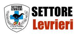 settorelevrieri_logo_sito