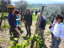 Italiahn wine tasting tours in Tuscany