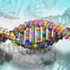 Verso una terapia genica per la malattia di Krabbe