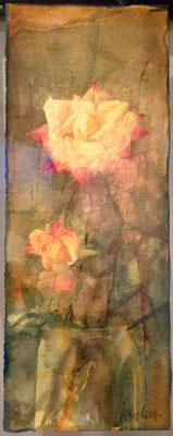 i carciofi sono rose, ma consapevoli