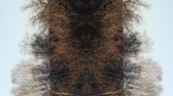 Still-kuva videoteoksesta Imperfect Variance, 2015