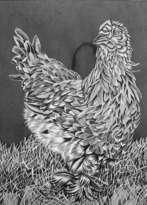Pirjetta Brander: Kaneli, Ink on paper, 70 x 100 cm, 2020