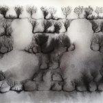 Eveliina Hämäläinen: PUISTO, muste paperille, 18 x 26 cm, 2019