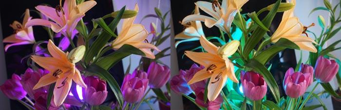 Henni Kitti: Kuinka sekoittaa värejä silmissään; stereoskooppinen pari; mitat vaihtelevat; 2016