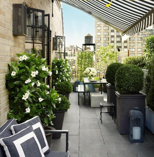 Black, white and green in this Manhattan terrace. Friday's Favourites, Gallerie B blog.