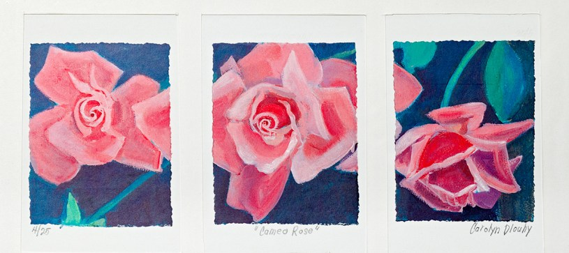 Cameo Rose Triptych print Matted & framed $65.00
