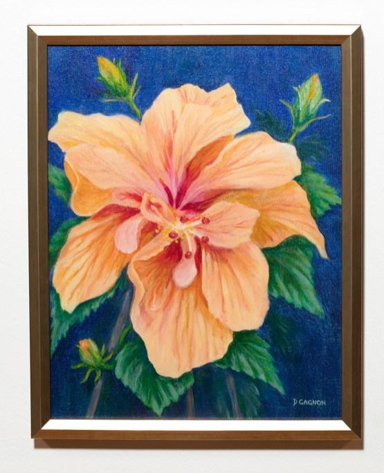 Peach Hibiscus Giclée print Framed $165.00