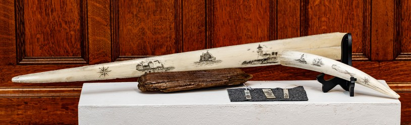 """""""Scrimshaw"""" by Michael Tracey"""