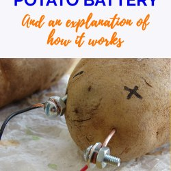 Making Potato Battery And How It Works