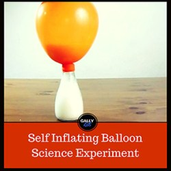 Self Inflating Balloon Science Experiment: An Easy Science Project To Do With Kids