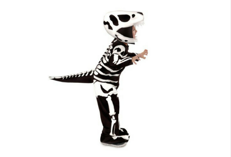 Trex bones or fossils costume. Black and white. Very cool.