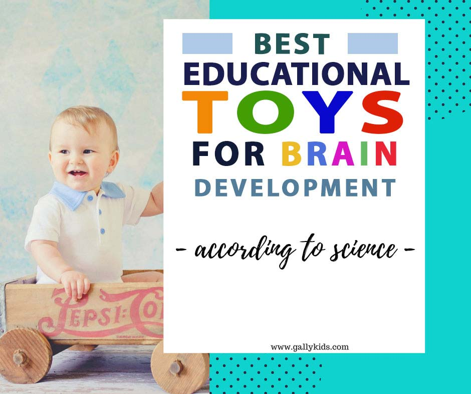 Educational toys that help accelerate the development of a child's brain.