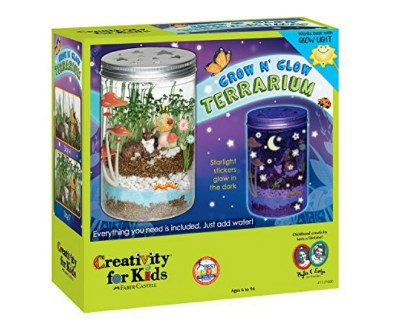 A fun way for kids to learn about plants grow. Also, why do plants survive in a terrarium? A fun science activity