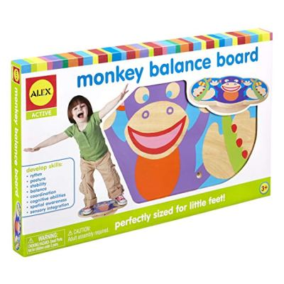 A very simple but useful toy for developing gross motor skills. Plus learning to balance is also a very important developmental milestone