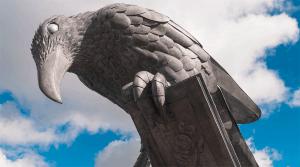 Fowey Rook The Birds – Thrussells