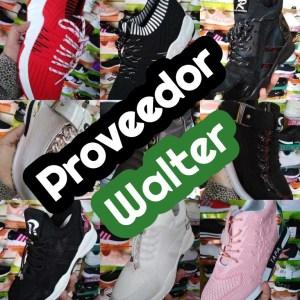 Proveedor de Zapatillas Walter