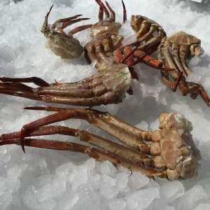 patas de marisco