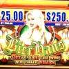 bier-haus-williams-bluebird-2-slot-machine-2