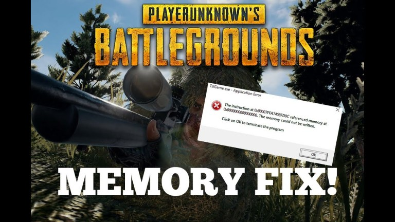 PUBG referenced memory error fix