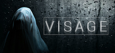 Download Visage v3.04-P2P