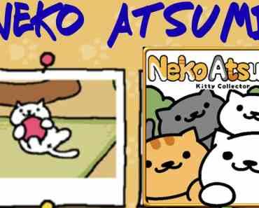 Neko Atsume Kitty Collector for pc