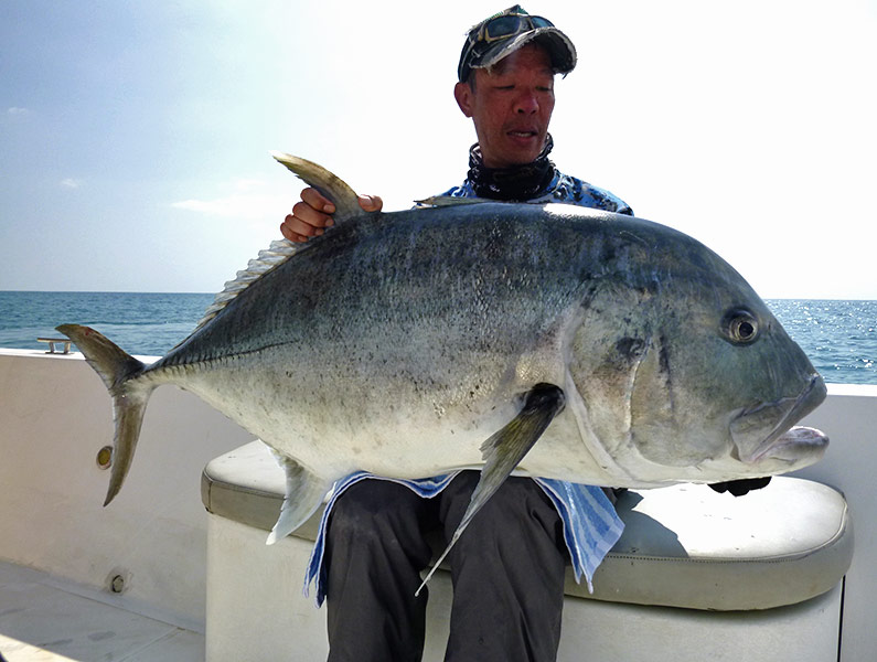13_giant-trevally_popping_andamans_fishing_carpenter-rods_shimano-stella-reels_srgala-lures_koh-guan-chu