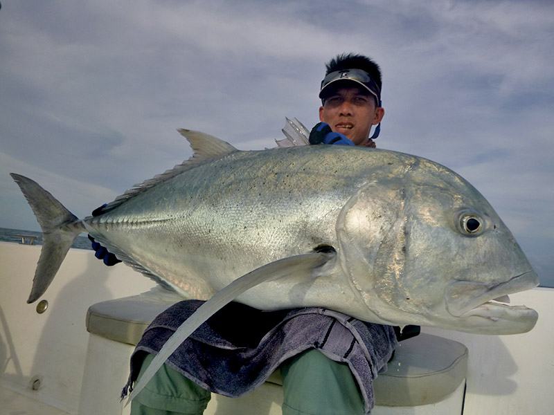 3_giant-trevally_popping_andamans_fishing_carpenter-rods_shimano-stella-reels_hammer-head-lures_koh-guan-chu